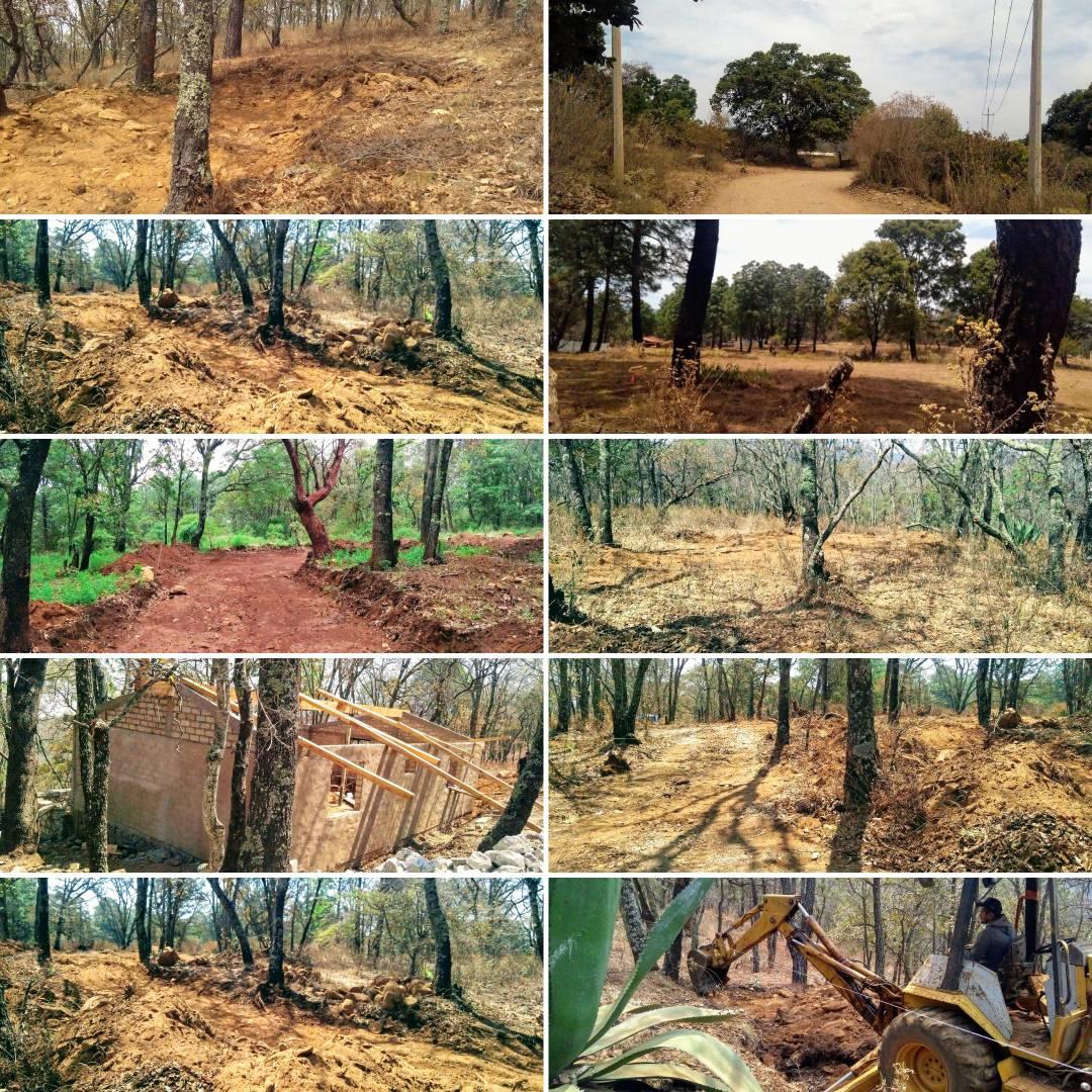 Natura YOLOSTA Terrenos Sustentables LQN 2
